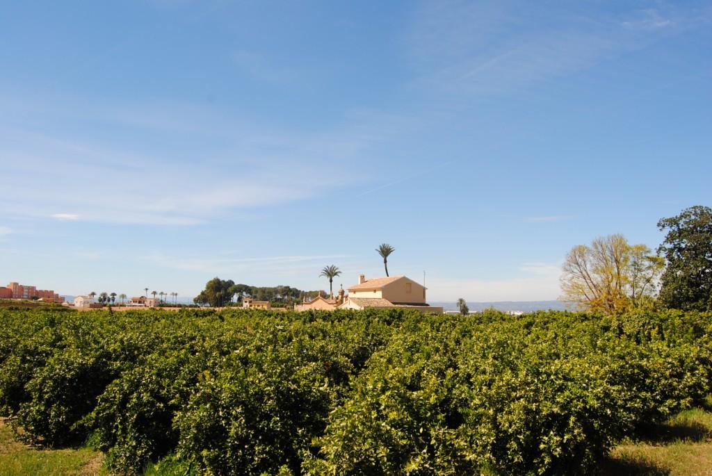 huerto san eusebio vista de los campos
