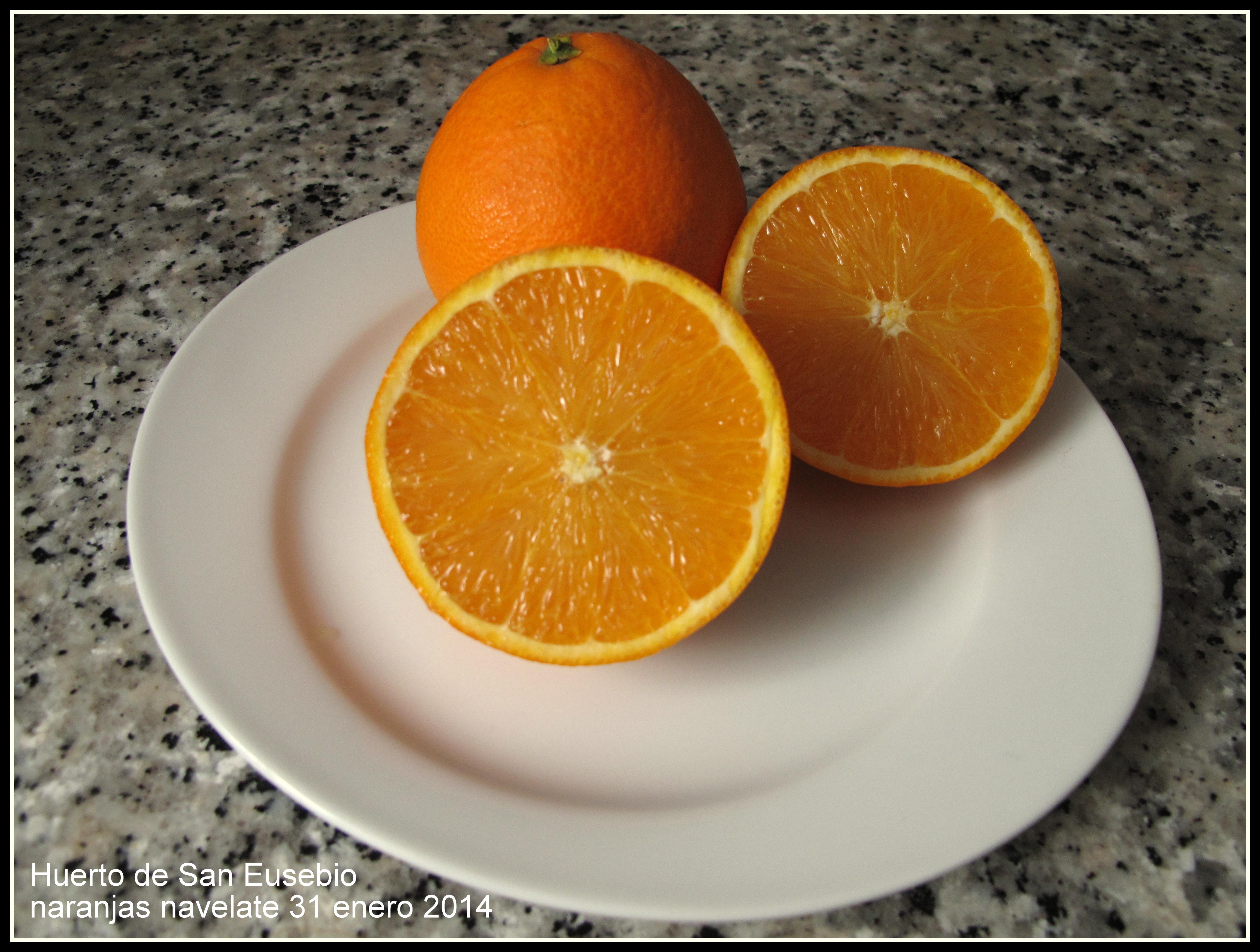 naranjas navelate carcaixent