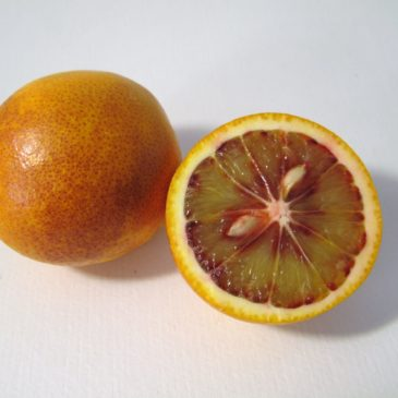 Naranjas Sanguinas ecológicas caja de 10 Kg