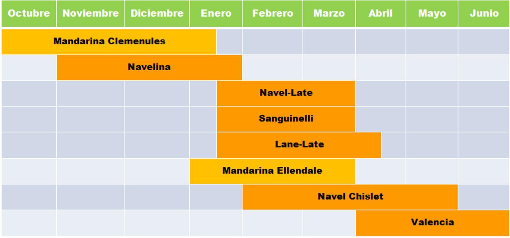 Calendario Naranjas San Eusebio Carcaixent