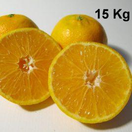 Mandarinas Ecológicas caja de 15 kg