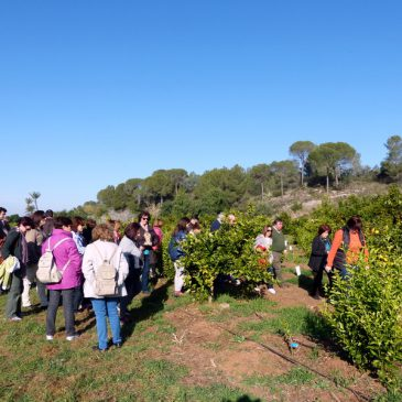 Visita de la Asociación de Singles Valencianos
