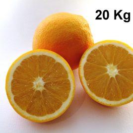 Naranjas Navelate Caja de 20Kg
