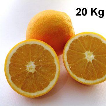 Naranjas ecológicas 20Kg