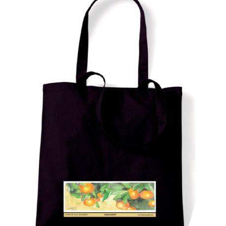 Bolsa san eusebio clementinas