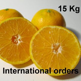 Mandarines BIO 15Kg France