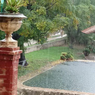 Naranjas navelinas y retrasos por la lluvia