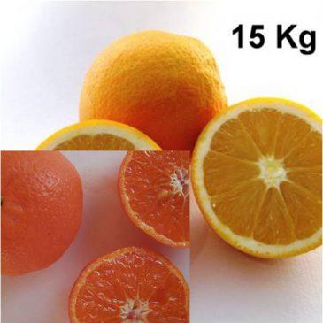 15 Kg Caja combinada naranjas y mandarinas ellendale